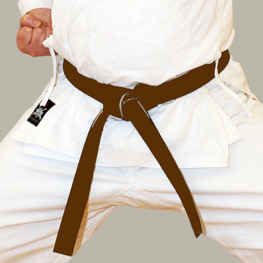 Brown Belt position in Karate Belts Order