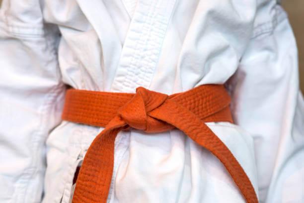 orange belt karate