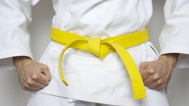 yellow belt karate