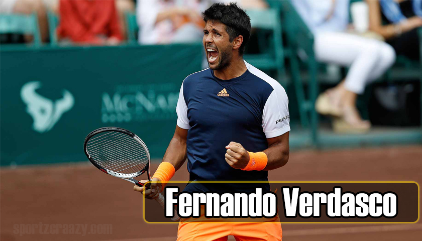 Fernando Verdasco win