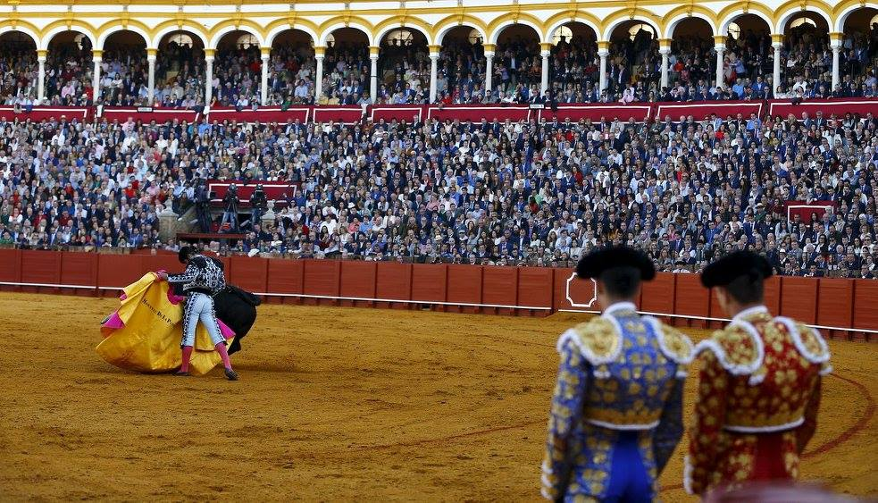 The Bullfighting Season