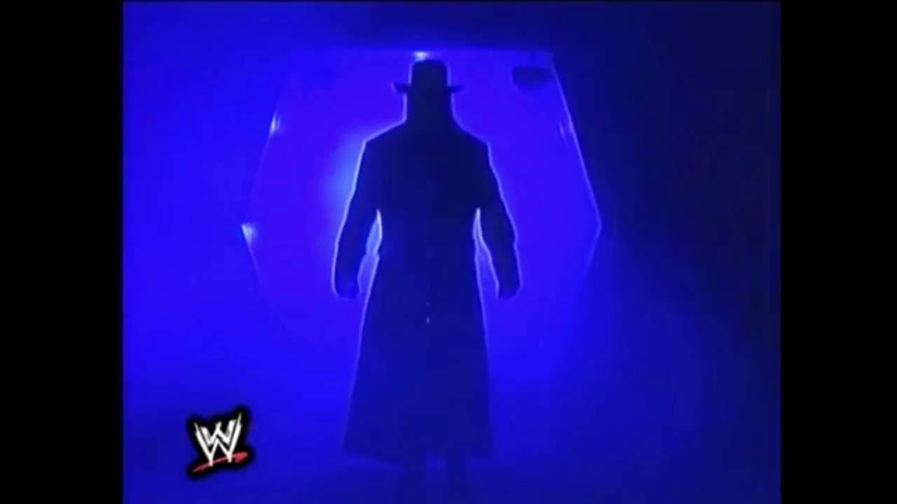 Undertaker in Summer Slam 1994