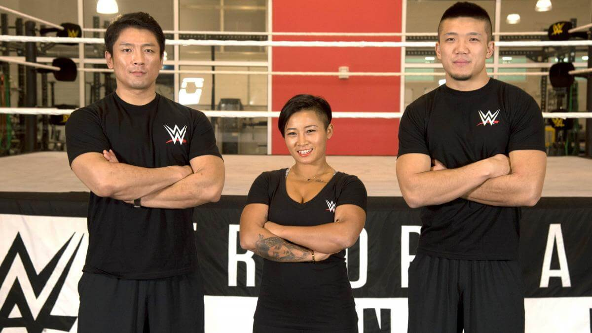 wwe Fitness Trainer